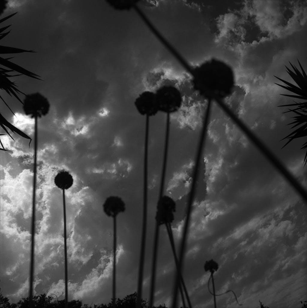 El paraiso de los creyentes - © kamel mennour