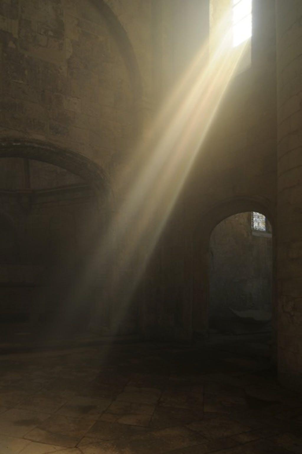 Exhibition view, Eglise Saint Honorat des Alyscamps, Arles - © kamel mennour
