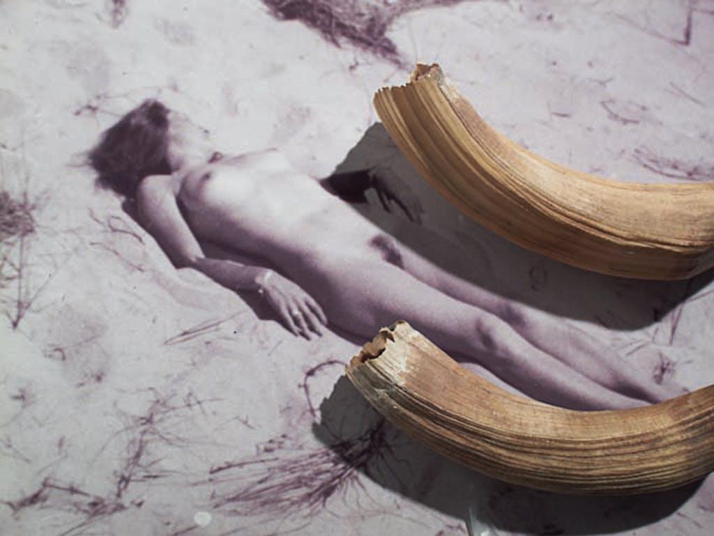 Collection Préhistorique (Femme au bain de soleil et dents d'hippopotame) - © kamel mennour