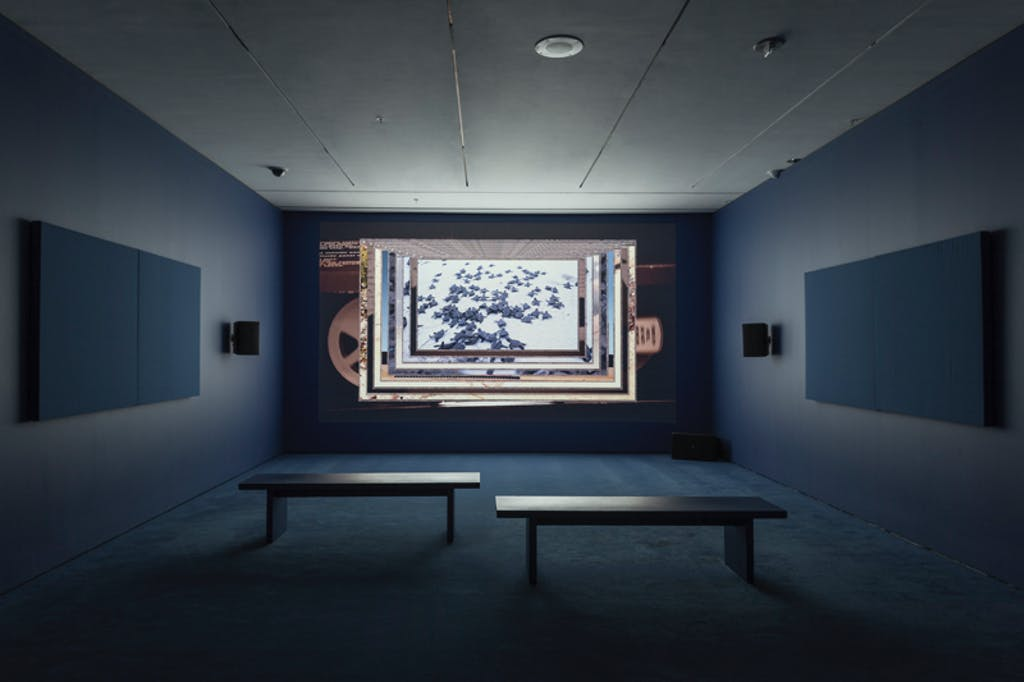Exhibition view, MoMA, New York - © kamel mennour