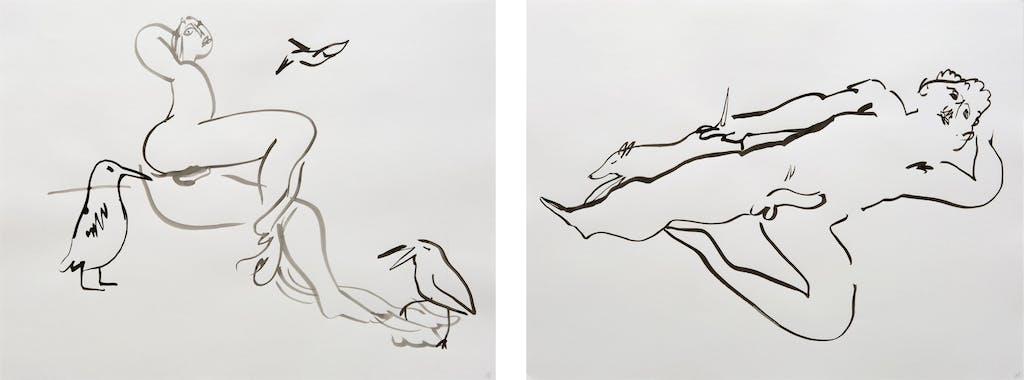 """L'Amour des animaux (""""Tropics of Love"""" series) - © kamel mennour"""