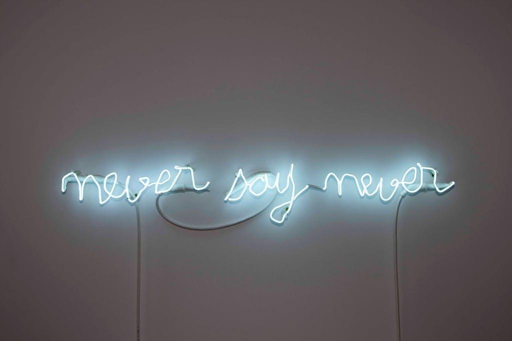 Never say Never - © kamel mennour