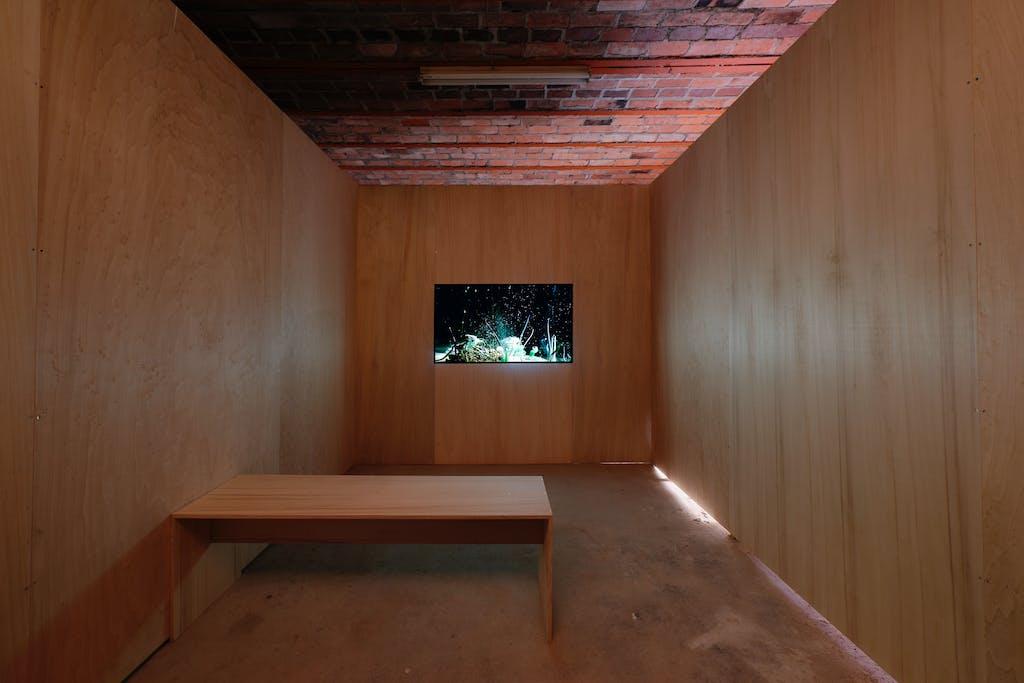 Exhibition view, Centre international d'art et du paysage, Île de Vassivière - © kamel mennour