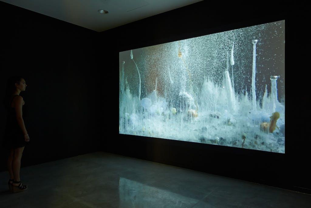 Hicham Berrada, vue de l'exposition, Musée régional d'art contemporain, Sérignan, 2015. Crédit : Jean-Christophe Lett. - © kamel mennour