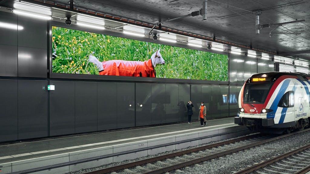 Installation view, Lancy-Bachet railway station - © kamel mennour