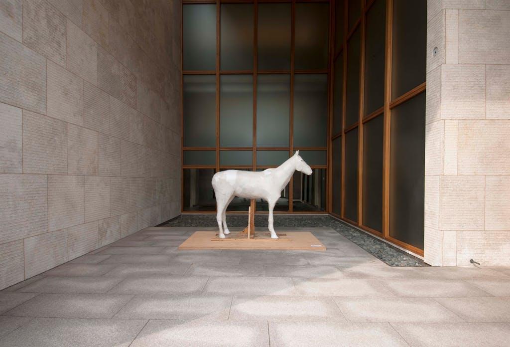 Exhibition view, Barnes Foundation, Philadelphia - © kamel mennour