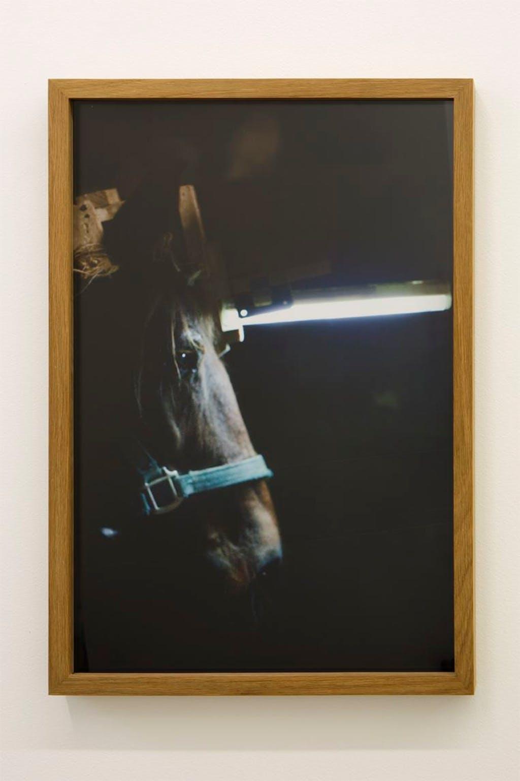 The unicorn - © kamel mennour