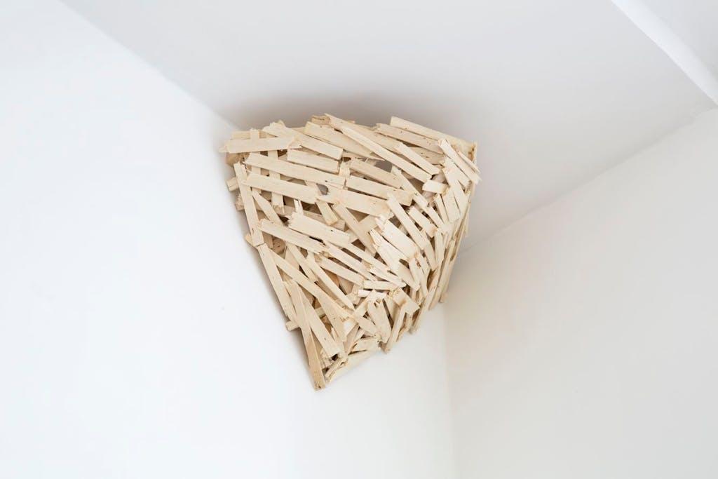 Nest n°8 - © kamel mennour