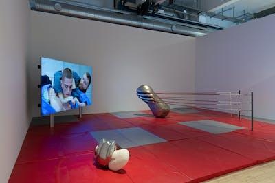 Camille Henrot - Copenhagen Contemporary - © kamel mennour