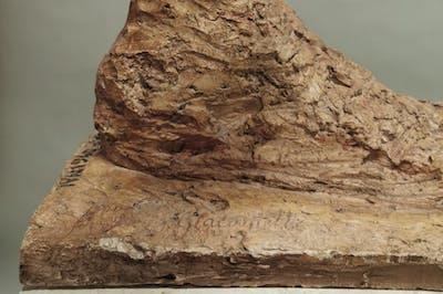Douglas Gordon - Institut Giacometti - © kamel mennour