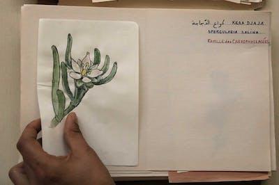 Mohamed Bourouissa - Manifesta - © kamel mennour