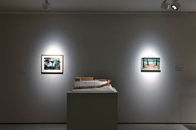 Tadashi Kawamata - Kulturstiftung Basel - © kamel mennour